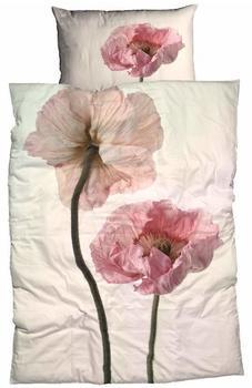 Casatex Bettwäsche »Monja«, mit rosa Mohnblume, rosa