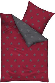Kaeppel Stars 80x80+135x200cm rubin