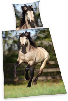 Herding Flanell-Pferd 80x80+135x200cm
