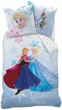 CTI Bettbezug Frozen Winter