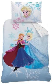 CTI Disney Frozen (043693) 70x90+140x200cm