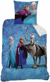 DISNEY Frozen Team Bettbezug 140 x 200