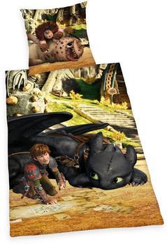 Herding Dragons - Renforcé Wende Baumwolle 135x200cm