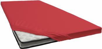 Schlafgut Topper-Spannbetttuch Jersey-Elasthan 180x200-200x220cm kirsche