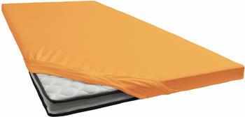 Schlafgut Topper-Spannbetttuch Jersey-Elasthan 180x200-200x220cm platin