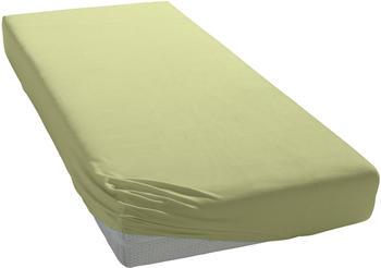 Schlafgut Basic Jersey-Spannbetttuch 140x200-160x200cm lind
