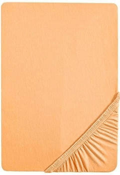 biberna-77144-jersey-stretch-140-160-x-200-cm-gold