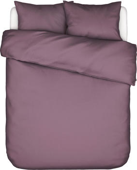 Essenza Guy 2x80x80+200x200cm dusty lilac