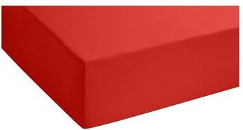 Biberna Jersey-Stretch (77144/176/087) 180x200-200x200cm rot