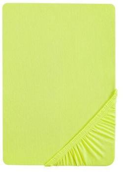 Biberna 77866 Jersey-Stretch 180x200-200x220cm apfelgrün