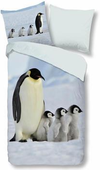 Good Morning Pinguins 80x80+155x220cm