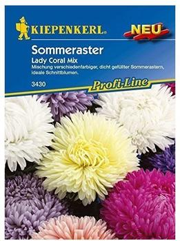 Kiepenkerl Sommeraster Lady Coral Mix