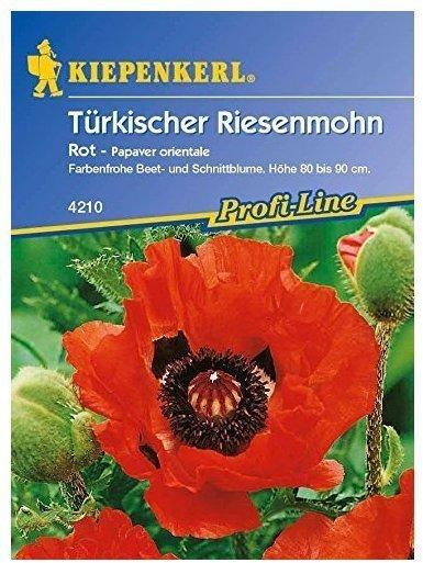 Kiepenkerl Türkischer Riesenmohn rot