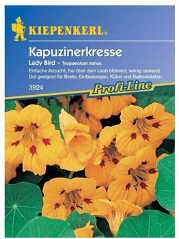 Kiepenkerl Kapuzinerkresse Ladybird