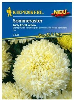 Kiepenkerl Sommeraster Lady Coral Yellow