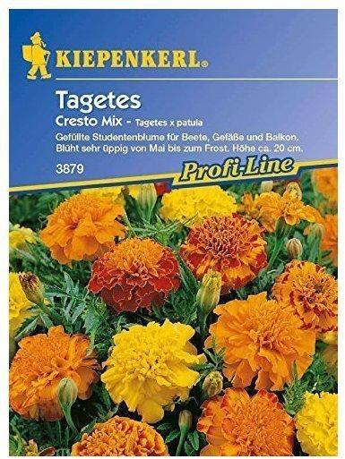 Kiepenkerl Tagetes patula Cresto Mix