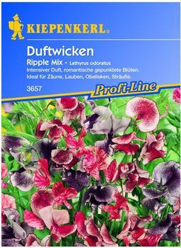 Kiepenkerl Edel-Wicken Ripple Mix