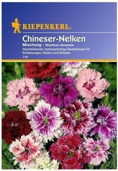 Kiepenkerl Chineser-Nelken-Mischung