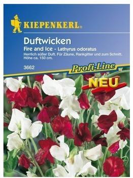 "Kiepenkerl Duftwicken ""Fire and Ice"""