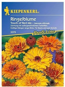 kiepenkerl-ringelblume-touch-of-red-mix
