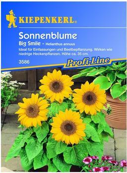 """Kiepenkerl Sonnenblume """"Big Smile"""""""