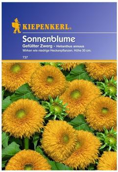 """Kiepenkerl Sonnenblume """"Gefüllter Zwerg"""""""