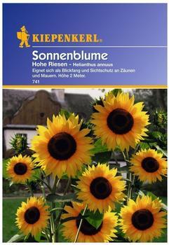 "Kiepenkerl Sonnenblume ""Hohe Riesen"""