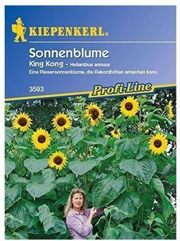 """Kiepenkerl Sonnenblume """"King Kong"""""""