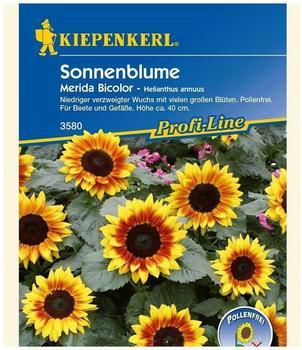 "Kiepenkerl Sonnenblume ""Merida Bicolor"""