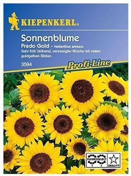 Sonnenblume /'Sunbright Supreme/' 15 Samen 5160 ca Helianthus annuus