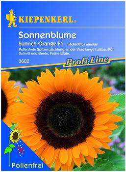 "Kiepenkerl Sonnenblume ""Sunrich Orange"" F1"