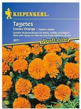 """Kiepenkerl Tagetes """"Cresto Orange"""""""