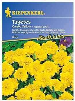"Kiepenkerl Tagetes ""Cresto Yellow"""