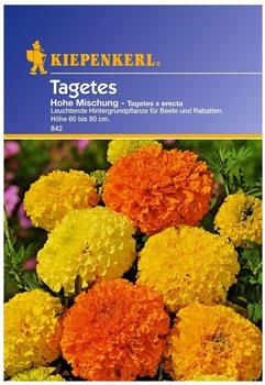 """Kiepenkerl Tagetes """"Hohe Mischung"""""""
