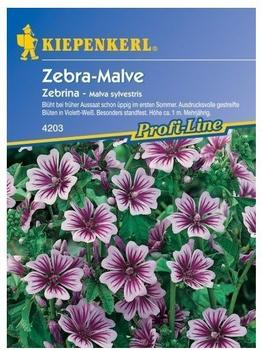 "Kiepenkerl Zebra-Malve ""Zebrina"""