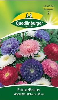 Quedlinburger Saatgut Prinzeß-Aster Mischung