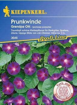 """Kiepenkerl Prunkwinde """"Grandpa Ott"""""""