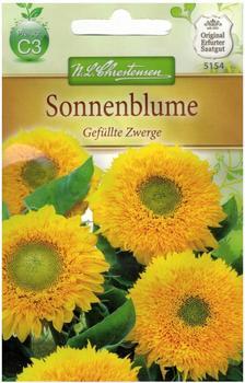 Chrestensen Sonnenblume Gefüllte Zwerge