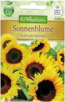 Chrestensen Sonnenblume Sunbright Supreme