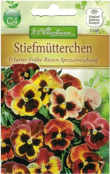 Chrestensen Stiefmütterchen Erfurter-Frühe-Riesen