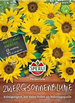 Sperli Sonnenblumen Pacino Cola