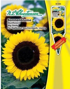 Chrestensen Sonnenblume Big Smile