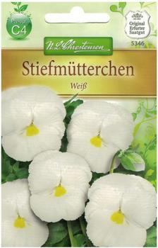 Chrestensen Stiefmütterchen Weiß