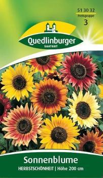 Quedlinburger Saatgut Sonnenblume 'Herbstschön'