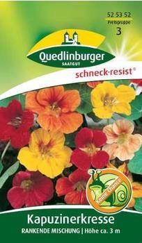Quedlinburger Saatgut Kapuzinerkresse 'Rankende Mischung'