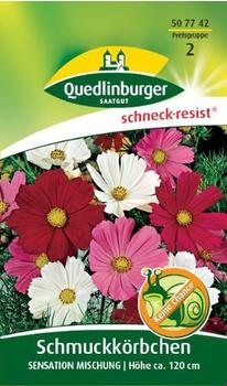Quedlinburger Saatgut Schmuckkörbchen 'Senat Mischung'