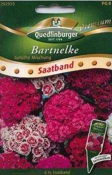 Quedlinburger Saatgut Bartnelke 'Gefüllte Mischung'