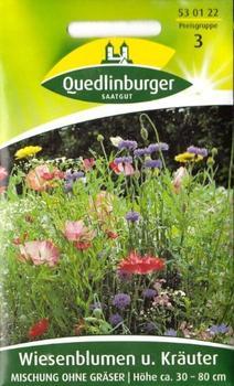 Quedlinburger Saatgut Wiesenblumen und Kräuter-Mischung
