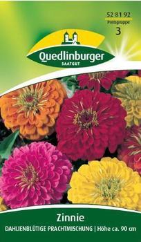 Quedlinburger Saatgut Zinnie 'Dahlienblütige' Prachtmischung