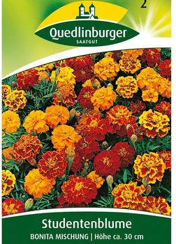 Quedlinburger Saatgut Studentenblume 'Bonita Mischung'